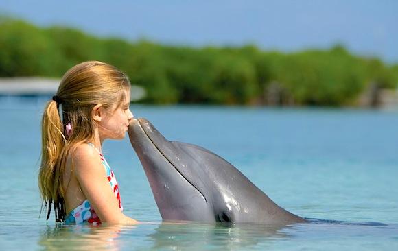 Goa_Dolphins