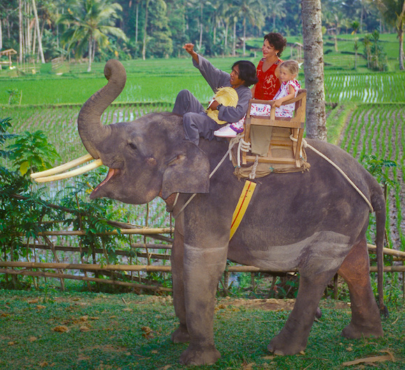 Elephant_ride2