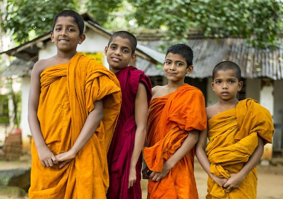 Шри-Ланка с детьми, куда поехать, какой выбрать отель, экскурсии для детей